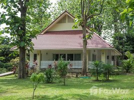 5 Bedrooms House for sale in Mae Pong, Chiang Mai 3 Houses in Doi Saket with 4 Rai of land for Sale