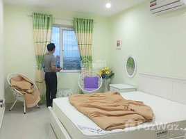 巴地頭頓省 Nguyen An Ninh Dic Phoenix 2 卧室 住宅 租