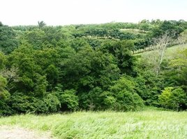 Guanacaste All in one : Volcano-Lake-Jungle view: Large property for construction and hobby farming, San Luis, Guanacaste N/A 土地 售