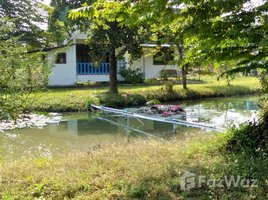 8 Bedrooms Property for sale in Chiang Dao, Chiang Mai Main Villa with 6 Bungalow for Sale