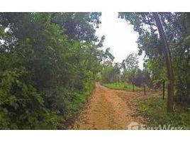 N/A Immobilier a vendre à , Bay Islands In quiet area away from town, Utila, Islas de la Bahia