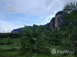 N/A Land for sale in Khao Thong, Krabi 2 Rai Land For Sale In Khao Thong