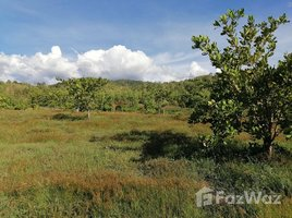 N/A Property for sale in Soi, Phrae 27 Rai Land with Unblocked Open Mountain View in Wang Chin, Phrae