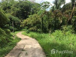N/A Terreno (Parcela) en venta en , Guanacaste Countryside Home Construction Site For Sale in Hojancha, Hojancha, Guanacaste