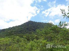 N/A Terreno (Parcela) en venta en , Alajuela Marjorie: Impressive 394 acre Property for sale in Upala - Alajuela, with literally tons of natural, Aguas Claras, Alajuela
