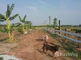 N/A Land for sale in Chai Wan, Udon Thani 10 Rai Land with Building for Sale in Chai Wan