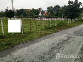 N/A Land for sale in Ban Sahakon, Chiang Mai Land 7 Rai For Sale Mae On