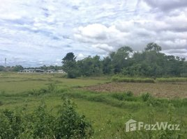 N/A Land for sale in Du Tai, Nan 11-0-25 Rai Land for Sale in Du Tai, Mueang Nan