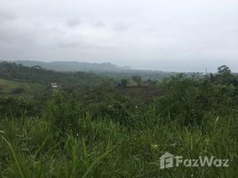 Santa Elena Manglaralto Close to 1 hectare of OCEAN VIEW land on a hill in Olon!, Olón, Santa Elena N/A 土地 售