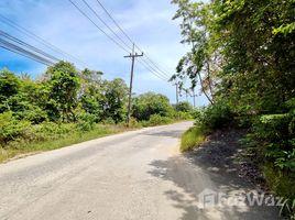 苏梅岛 Ko Pha-Ngan Stunning 1 Rai Sea View Land for Sale in Ko Pha-Ngan N/A 土地 售