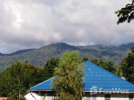 N/A Land for sale in Chang Phueak, Chiang Mai Land For Sale 5 minutes from Chiangmai University