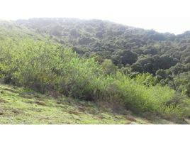 Valparaiso Puchuncavi Zapallar N/A 土地 售