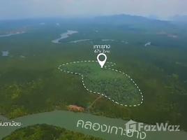 N/A Land for sale in Ko Lanta Noi, Krabi 67 Rai Private Island Near Ko Lanta For Sale