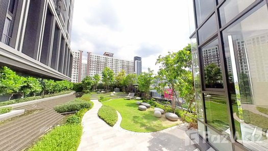3D Walkthrough of the Communal Garden Area at Centric Ratchayothin
