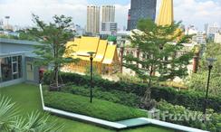 Photos 2 of the Communal Garden Area at Supalai Park Ekkamai-Thonglor