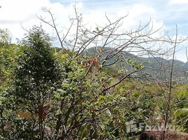 N/A Property for sale in Ko Pha-Ngan, Koh Samui Land For Sale In Koh Pha Ngan