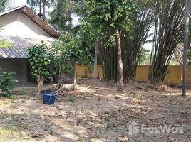N/A บ้าน ขาย ใน ริมเหนือ, เชียงใหม่ Nice 120 Sqw Land in City center of Mae Rim