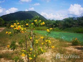 洛坤 Thung Sai Secluded Land with Lake and Mountain View in Sichon N/A 土地 售