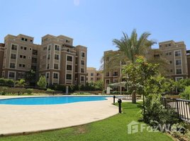 Cairo penthouse with swimming pool at the best price ... 3 卧室 顶层公寓 售