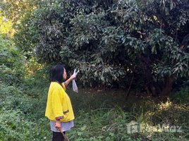 N/A Property for sale in Pa Daet, Chiang Mai 2 Rai 2 Ngan Riverside Land for Sale in Saraphi