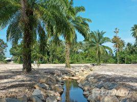 N/A Land for sale in Khanom, Nakhon Si Thammarat Land for sale in Khanom