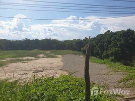 N/A Land for sale in Khun Khong, Chiang Mai Riverside Land 16 Rai 1 Ngan