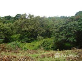Panama Oeste Sora SORA, CHAME, PANAMA OESTE, Chame, Panamá Oeste N/A 土地 售