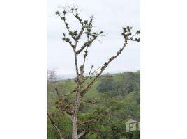 Santa Elena Manglaralto VISTA MAR: Just Released to the Public. Does Lush Jungle Vegetation and Majestic Ocean Views Sound G, Olón, Santa Elena N/A 土地 售