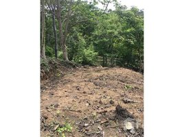 N/A Land for sale in , Puntarenas Carretera a Playa Blanca, Playa Naranjo, Puntarenas, Puntarenas, Address available on request