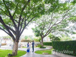 1 Bedroom Property for sale in Nong Pa Khrang, Chiang Mai Punna Residence Oasis 2