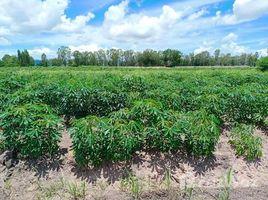 N/A Land for sale in Noen Kham, Chai Nat 26 Rai Land in Noen Kham, Chai Nat