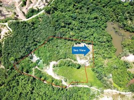 N/A Land for sale in Choeng Thale, Phuket Land For Sale In Layan