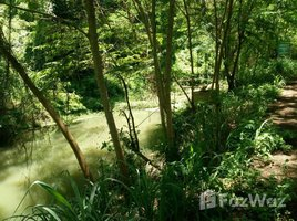N/A Property for sale in Ban Sahakon, Chiang Mai Land For Sale Closed To San Kam Pang Hot Spring