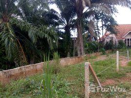N/A Land for sale in Krabi Yai, Krabi Land in Mueang Krabi Soi 33 for Sale