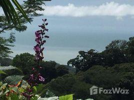 Puntarenas Lagunas 360 View Ocean, Coastline, Mountains, and More - 8.6 acres, Savegre, Puntarenas N/A 土地 售