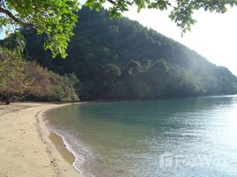 攀牙 Ko Yao Noi Land Front Beach 20 Rai in Koh Yao Noi N/A 土地 售