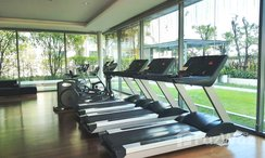 Photos 3 of the Communal Gym at The Room Sukhumvit 62