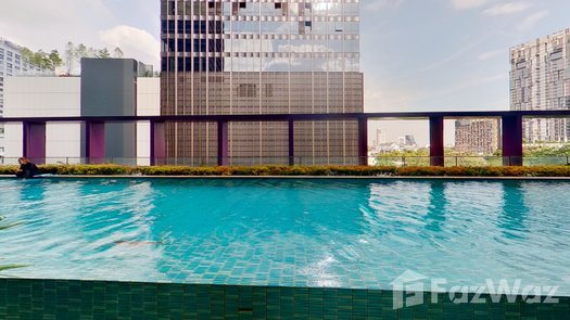 3D Walkthrough of the Communal Pool at Noble Remix