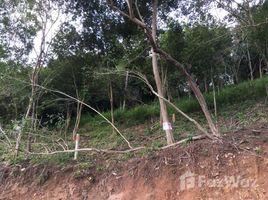 ขายที่ดิน N/A ใน แม่น้ำ, เกาะสมุย Land For Sale Bang Por Soi 4