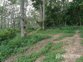 N/A Land for sale in Chalong, Phuket LAND FOR SALE SOI YOT SANE 1 - 16 Rai
