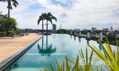 Photos 4 of the Communal Pool at Supalai Casa Riva