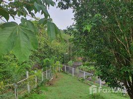 N/A Grundstück zu verkaufen in Khanong Phra, Nakhon Ratchasima Stunning Hill Land for Sale in Khao Yai