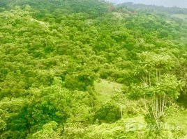 Puntarenas Dominical, Dominical, Puntarenas N/A 土地 售