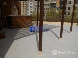 Cairo Furnished Penthouse For Rent In Maadi Degla 3 卧室 房产 租