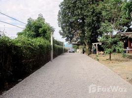 ขายที่ดิน N/A ใน เชียงดาว, เชียงใหม่ Stunning Mountain Views Prime Location Chiang Dao