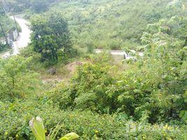 N/A Land for sale in Ko Pha-Ngan, Koh Samui Sea view Land in Haad Tien West Ko Pha-Ngan