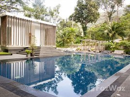 1 Bedroom Penthouse for sale in Kamala, Phuket The Trees Residence