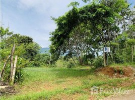 San Jose Tinamaste, Puntarenas, Address available on request N/A 土地 售