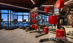 Photos 2 of the Communal Gym at EDGE Central Pattaya