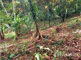 N/A Terreno (Parcela) en venta en Bastimentos, Bocas del Toro BOCAS DEL TORO, LOMA CHICA, BASTIMENTOS, Bocas del Toro, Bocas del Toro
